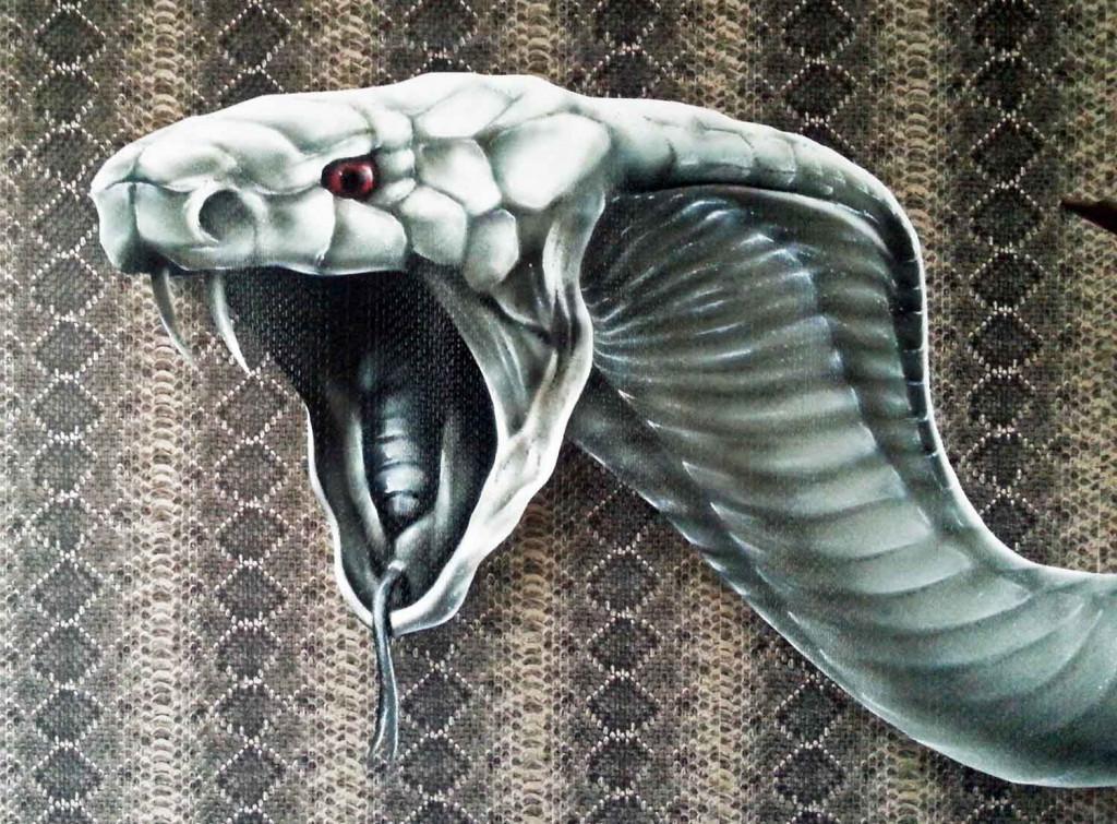 albinocobra-privat2